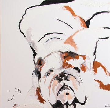 Bulldog for Nian - Brenden Bates