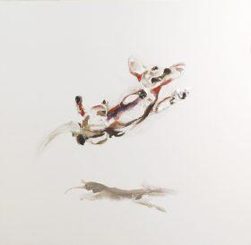 Dachshund Jump - Brenden Bates